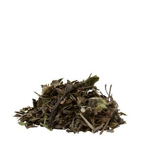 White Tea - Pai-Mu-Tan