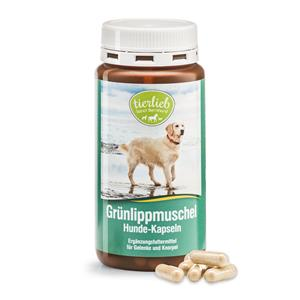 Green-lipped mussel extract for Dogs