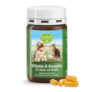 Vitamina B complex for dogs and cats
